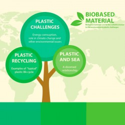 Biobased Materials. Challenges and concepts